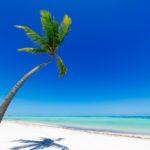 tropical-beach-1