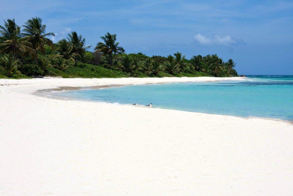 tropical-beach-4